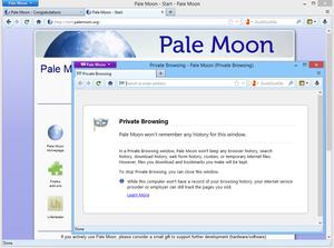 Pale Moon_privé
